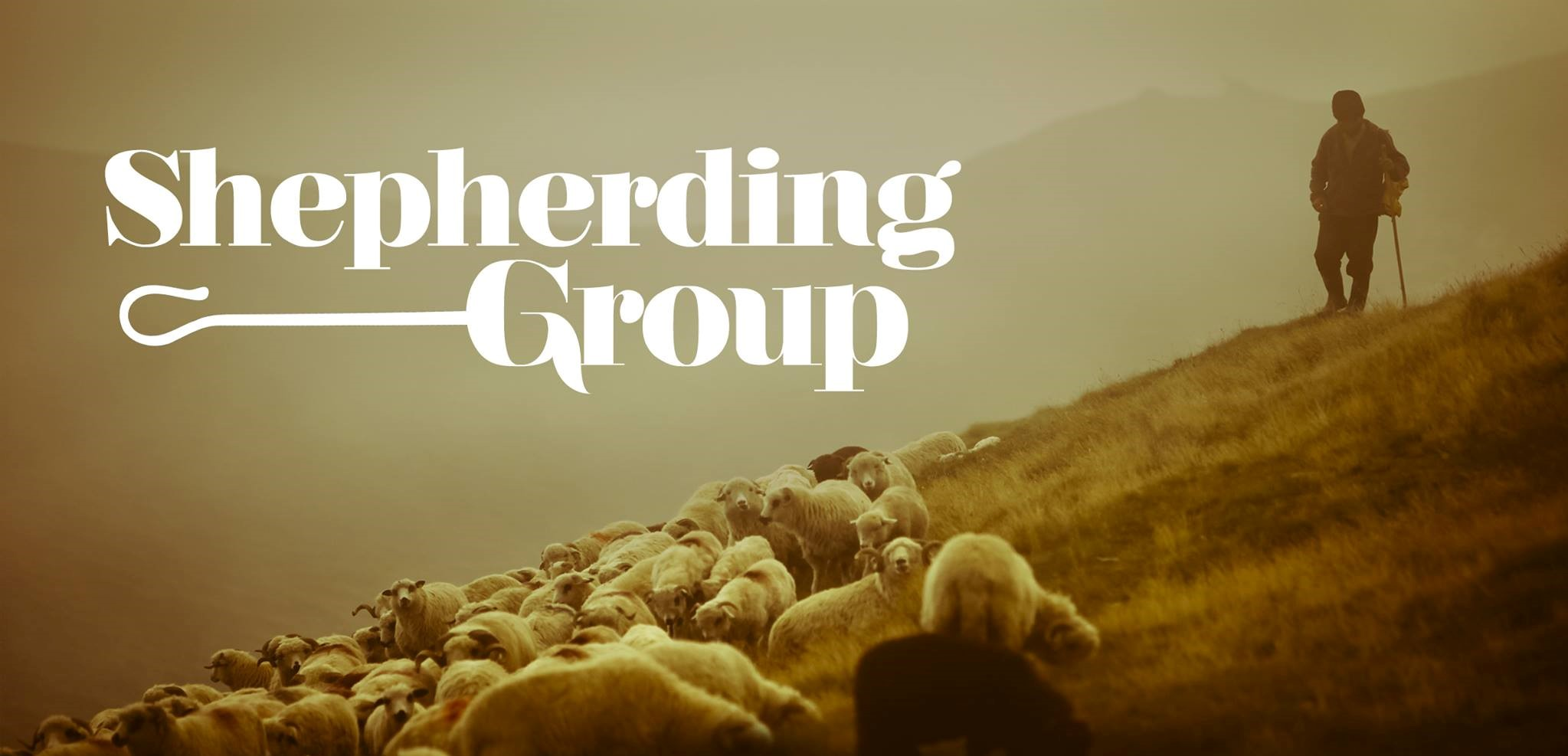 Shepherding Group (2)